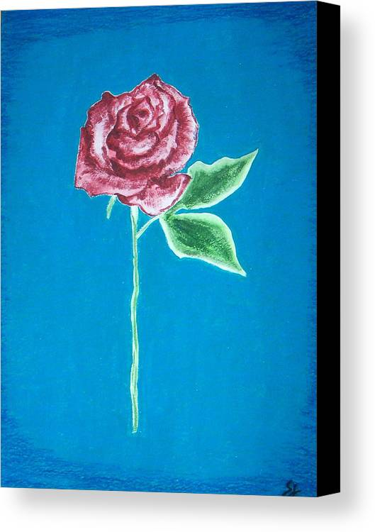Rose Canvas Print featuring the painting Beautiful Rose On Blue Background by Sanchia Fernandes