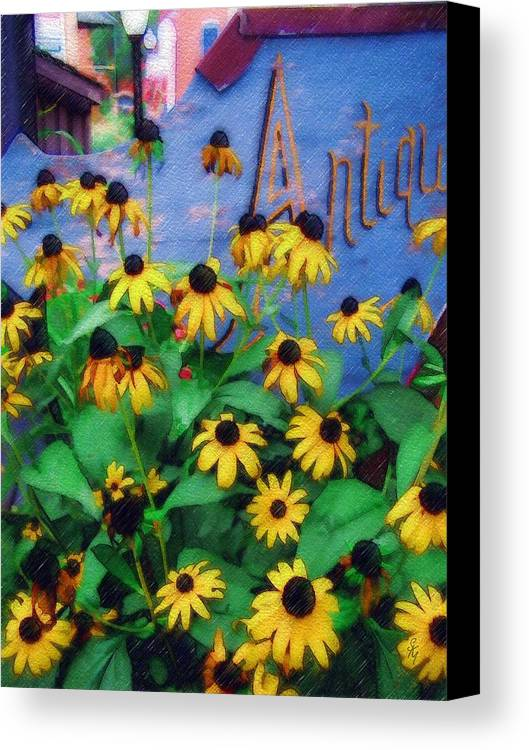 Flowers Canvas Print featuring the photograph Black-eyed Susans At The Bag Factory by Sandy MacGowan