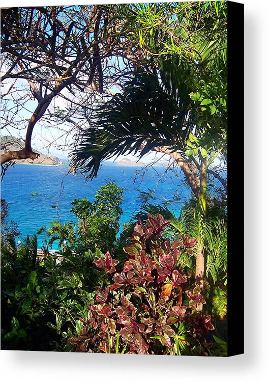 Water Canvas Print featuring the photograph Blue Lagoon Overlook by Caroline Urbania Naeem