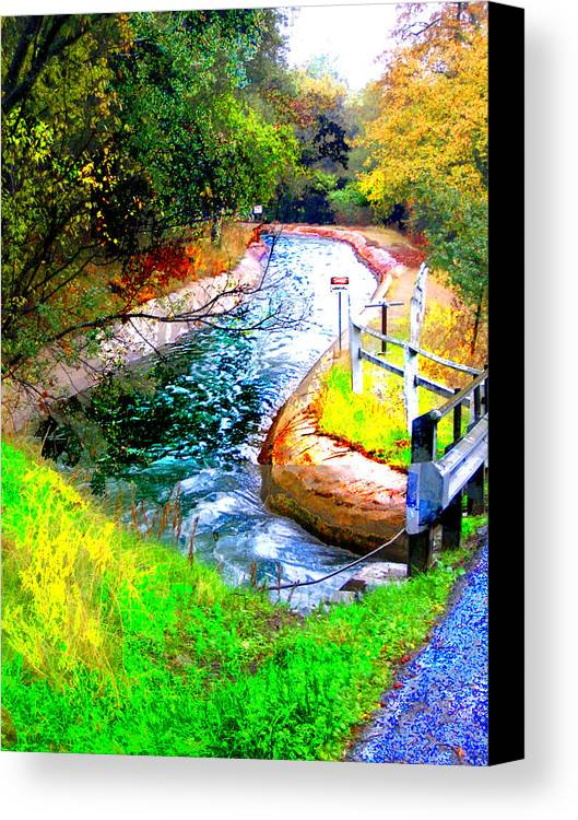 Canvas Print featuring the digital art Canal by Danielle Stephenson