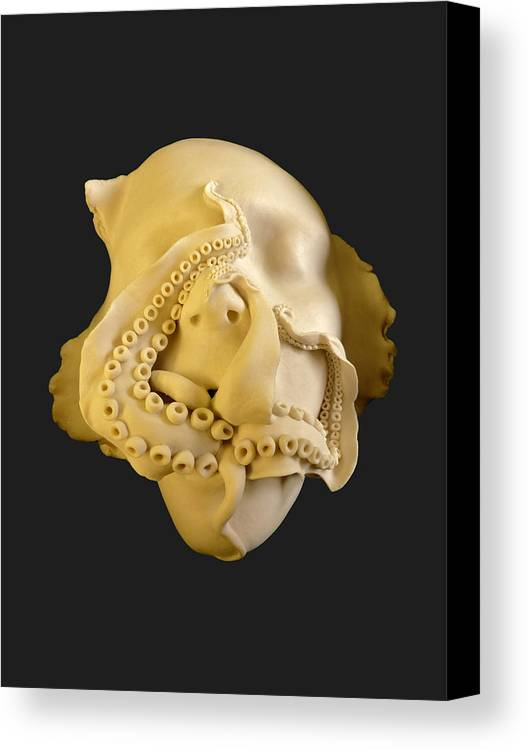 Porcelain Canvas Print featuring the ceramic art 'cephalophilia' by Ruth Power