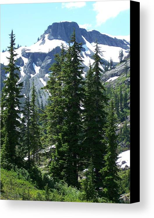 Mountain Peak Canvas Print featuring the photograph Coleman Pinnacle 2 by Gene Ritchhart