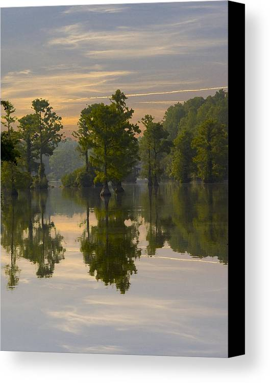 Greenfield Park And Gardens Canvas Print featuring the photograph Cypress In Lake Reflection by Paul Boroznoff