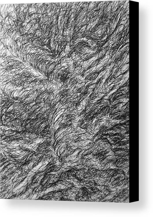 Landscape Canvas Print featuring the drawing Decay by Uwe Schein