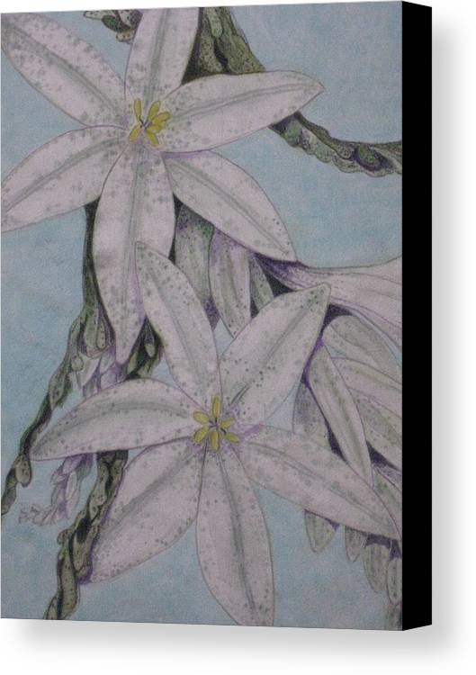 Floral Canvas Print featuring the painting Desert Lillie Close-up by David Kelly