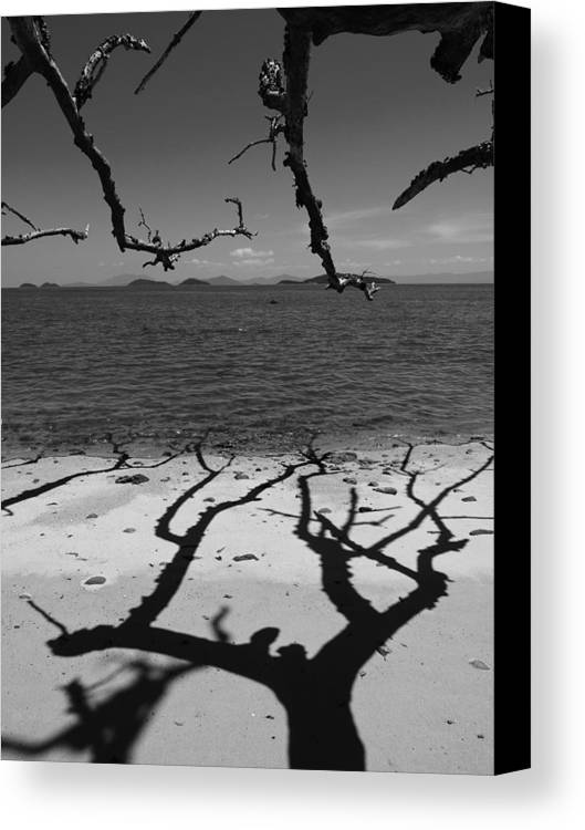 Dunk Island Canvas Print featuring the photograph Dunk Island Australia 172 by Per Lidvall