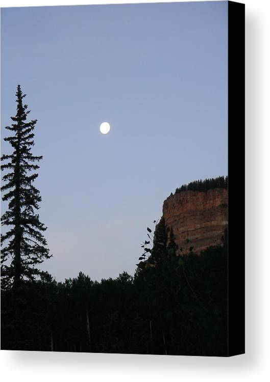 Nature Canvas Print featuring the photograph Durango by Peter McIntosh