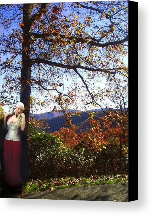 Fall Canvas Print featuring the photograph Elegant Fall by Scarlett Royal