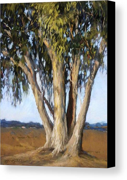 Landscape Canvas Print featuring the painting Eucs At Moss Landing by Maralyn Miller