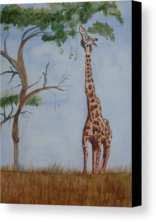 Landscape Giraffe Africa Tree Wildlife Canvas Print featuring the painting Evolution's Early Stretch by Warren Thompson
