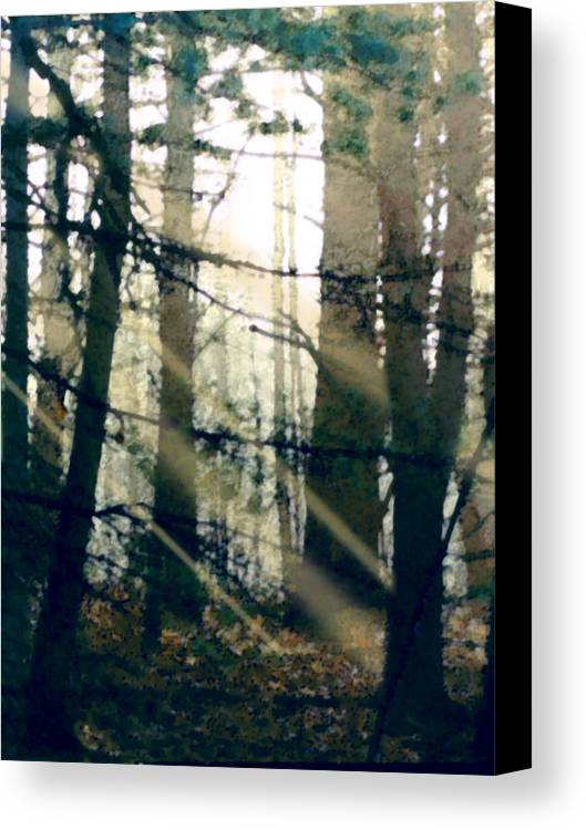 Forest Canvas Print featuring the painting Forest Sunrise by Paul Sachtleben