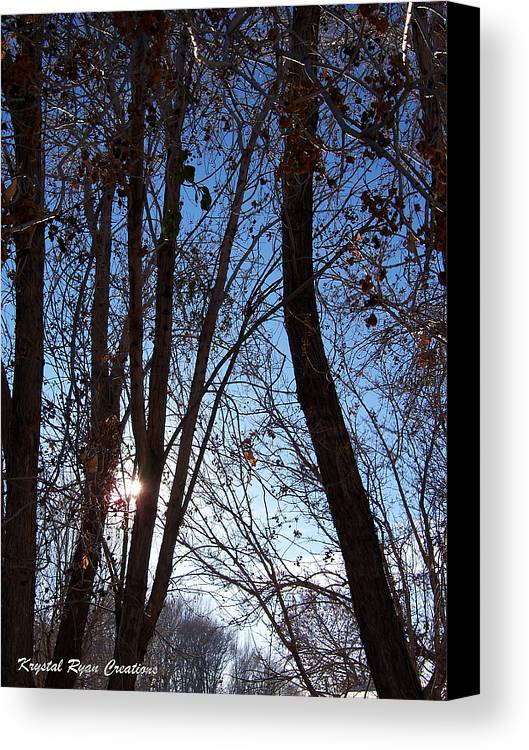 Glimmer Canvas Print featuring the photograph Glimmer by Laura Roberson Chavez