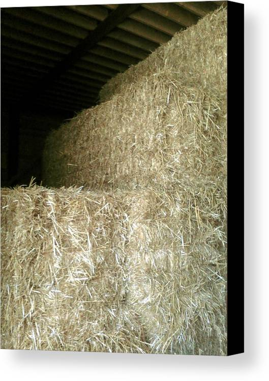 Hay Bales Canvas Print featuring the photograph Hay Bales by Emily Kelley