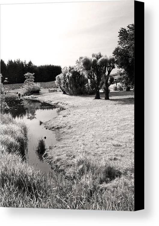 Babbling Brook Canvas Print featuring the photograph Idylic Stream by Everett Bowers