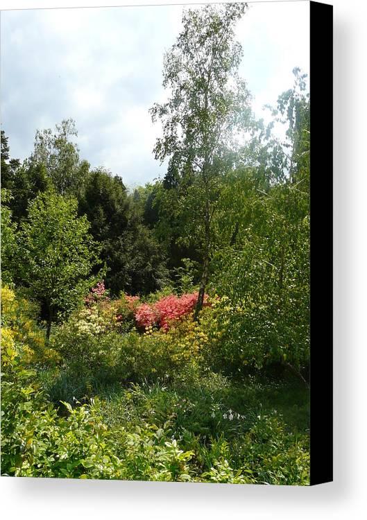 Spring Canvas Print featuring the photograph In The Garden by Attila Balazs