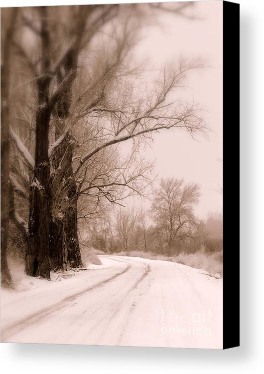 Winter Canvas Print featuring the photograph Just Around The Bend by Carol Groenen