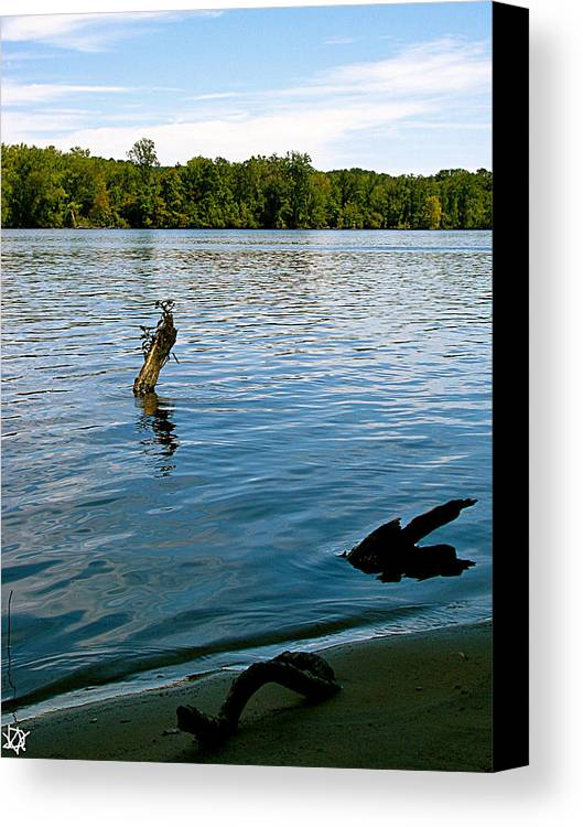 Lakeview Canvas Print featuring the photograph Lakeview  by Debra   Vatalaro