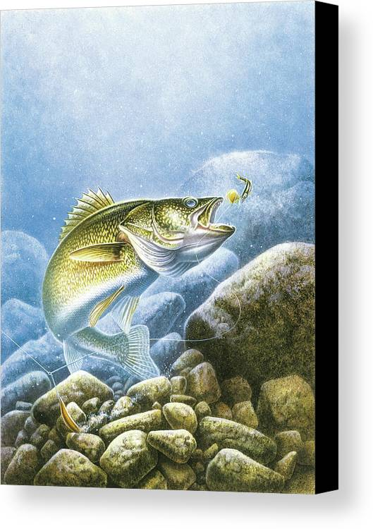 Jon Q Wright Canvas Print featuring the painting Lindy Walleye by JQ Licensing