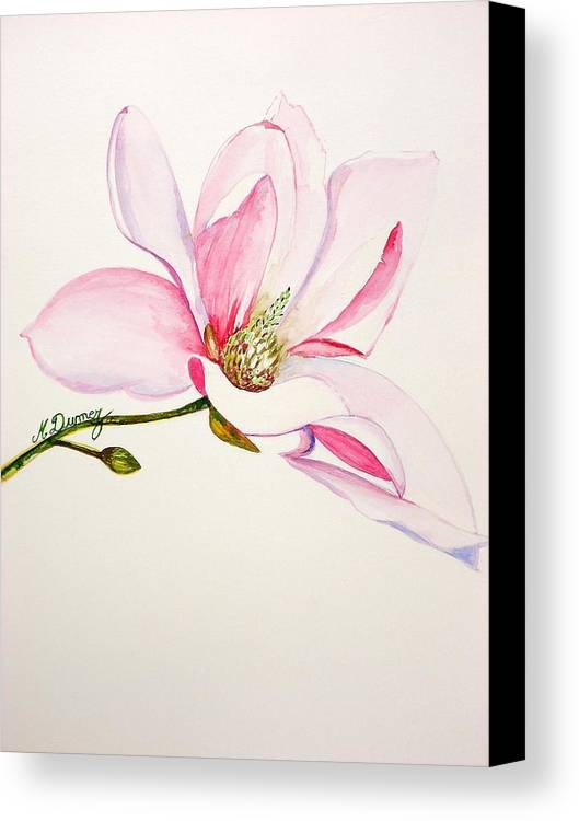 Flower Canvas Print featuring the painting Magnolia by Murielle Hebert
