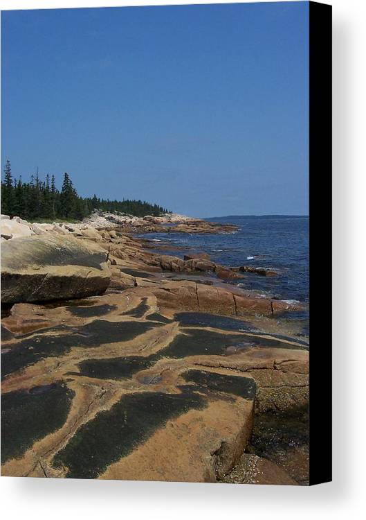 Maine Canvas Print featuring the photograph Maine Coast by Lisa Kane