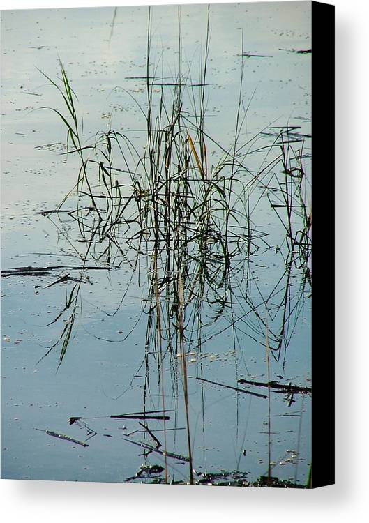 Waterscape Canvas Print featuring the photograph Marsh Grass by Donna Thomas