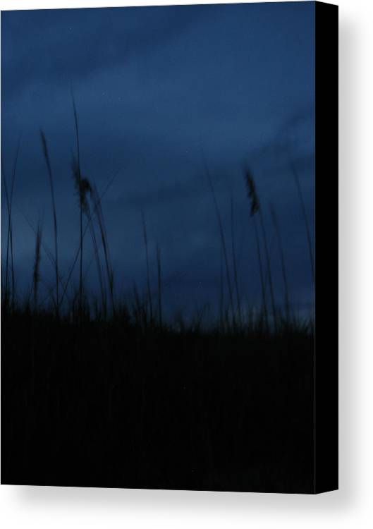 Dusk Canvas Print featuring the photograph Midnight Motion by Stacey May