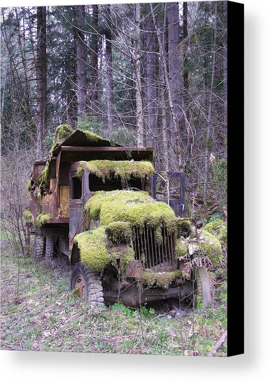 Truck Canvas Print featuring the photograph Mossy Truck by Gene Ritchhart