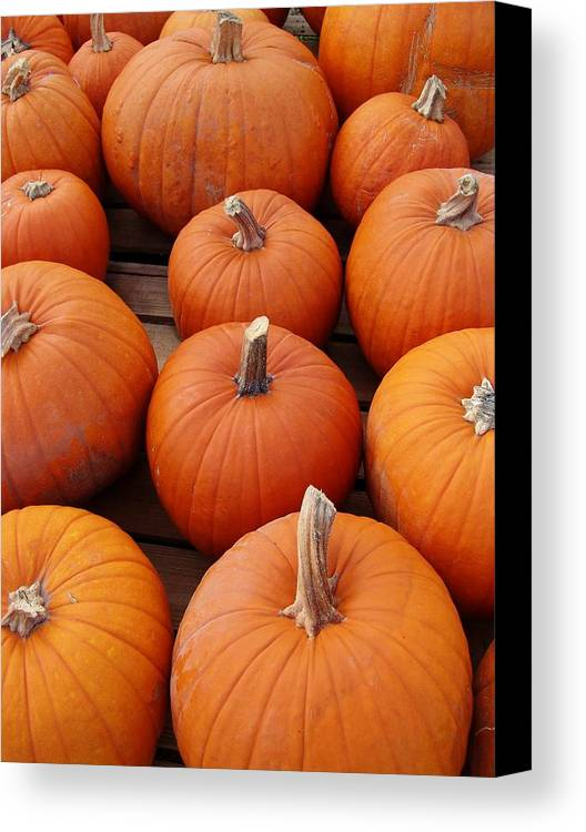 Pumpkin Canvas Print featuring the photograph Pumpkin Time by Florene Welebny