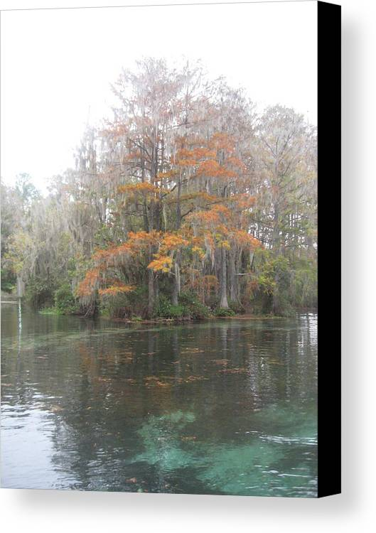 River Canvas Print featuring the photograph Rainbow River Colors by Warren Thompson