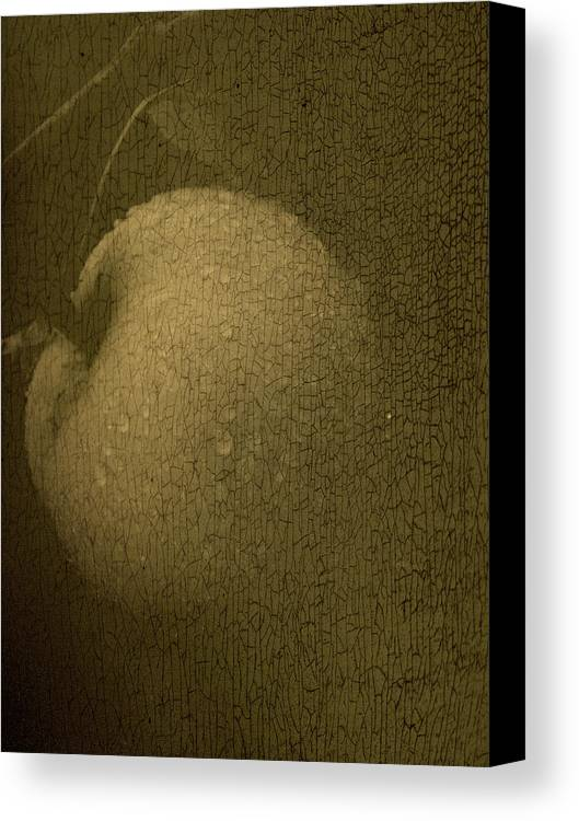 Texture Canvas Print featuring the photograph Rembrandts Fruit by Tingy Wende