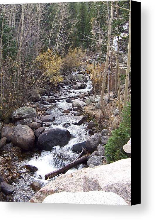 Landscape Canvas Print featuring the photograph River by Lisa Gabrius