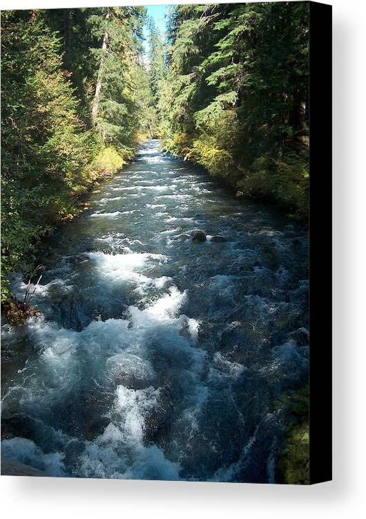Water Stream Creek Mckenzie River Bend Oregon Canvas Print featuring the photograph Rushing Waters by Janet Hall