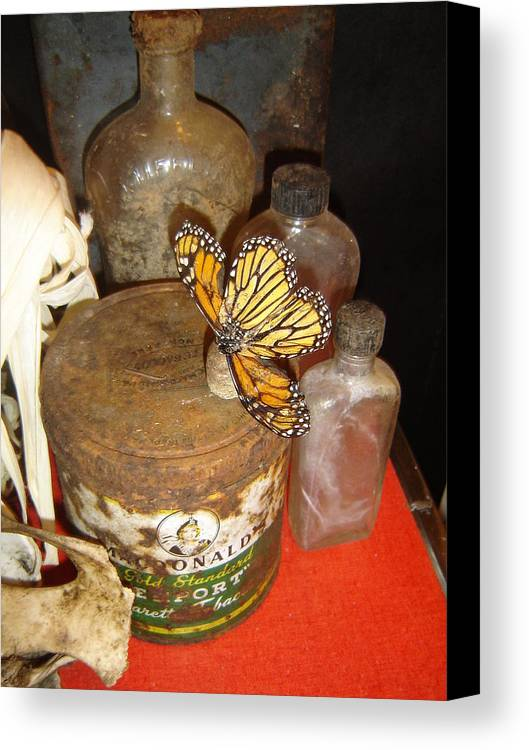 Butterfly Canvas Print featuring the photograph Spin Drift by Dean Corbin