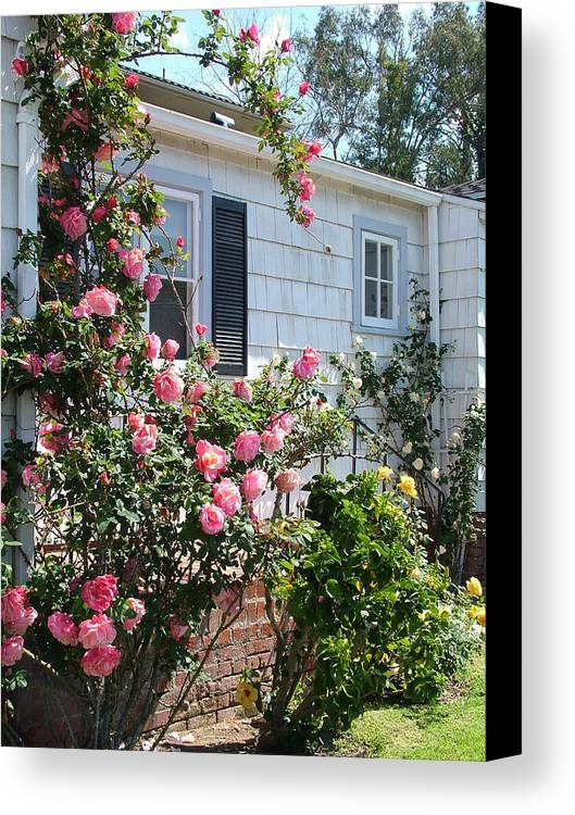 Cottage Canvas Print featuring the photograph Steps In Pink by John Loyd Rushing