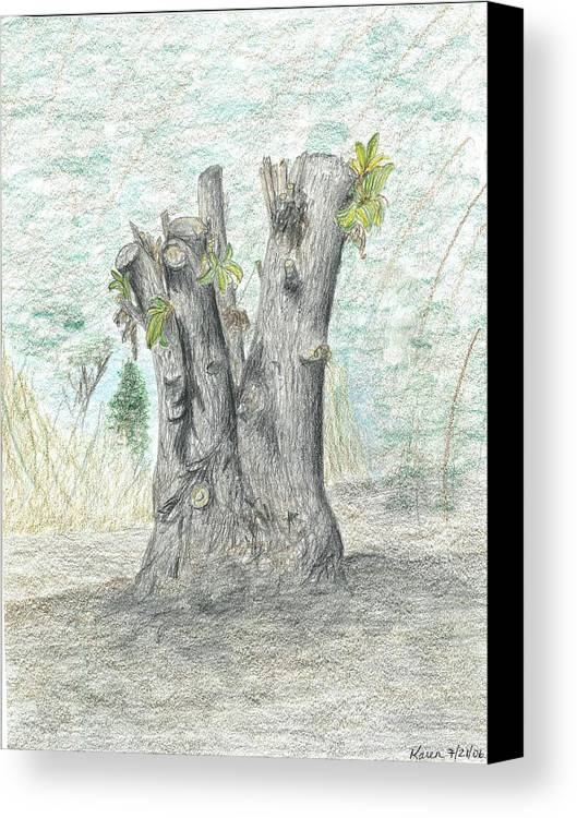 Stump Tree Chopped New Life Cut Forest Trimmed Blooming Canvas Print featuring the drawing Stump by Karen Miller