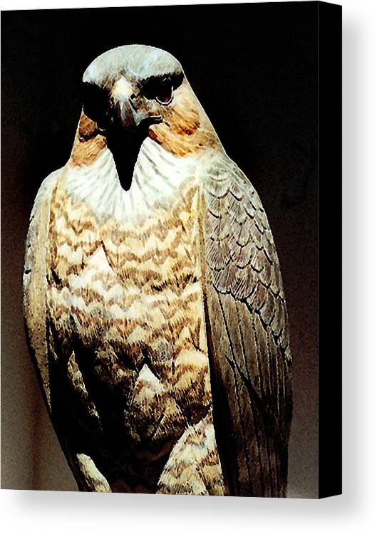 Birds Canvas Print featuring the painting The Hawk by Paul Sachtleben
