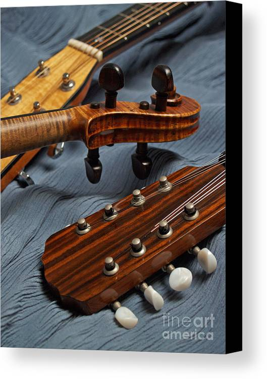 Guitar Canvas Print featuring the photograph Three Musical Instrument Heads On Blue by Anna Lisa Yoder