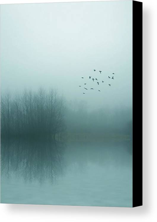 Fog Canvas Print featuring the photograph Through The Zero Hour by Angela King-Jones