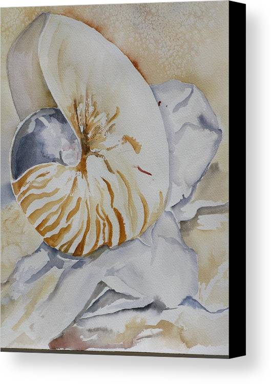Still Life Canvas Print featuring the painting Tiger Nautilus by Kathy Mitchell