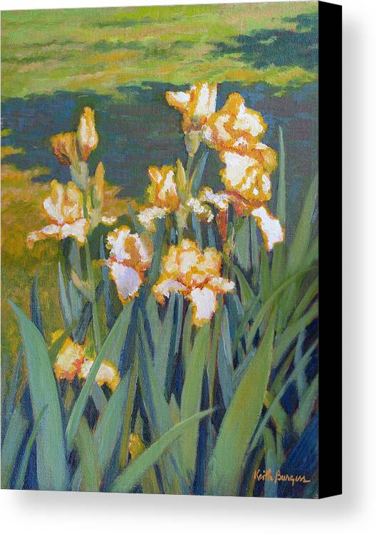 Impressionism Canvas Print featuring the painting Trimmed In Gold by Keith Burgess