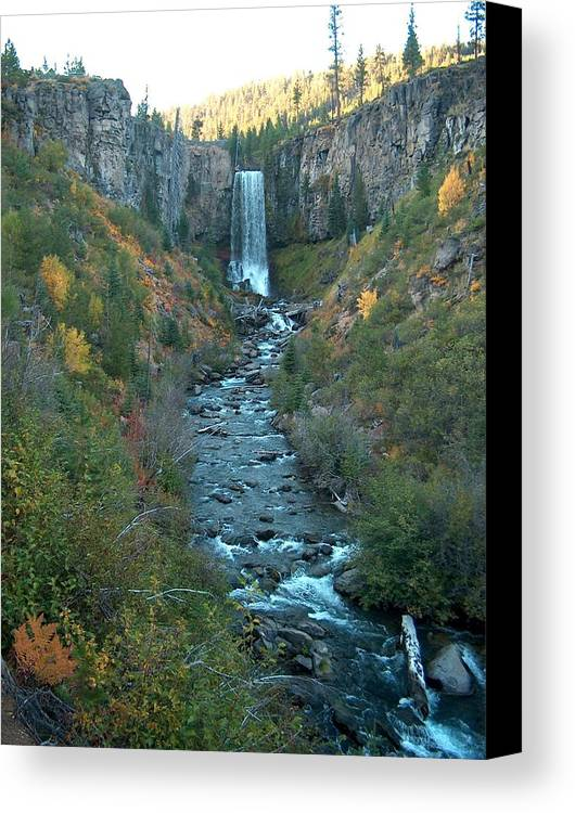 Waterfall Canvas Print featuring the photograph Tumalo Falls by Janet Hall