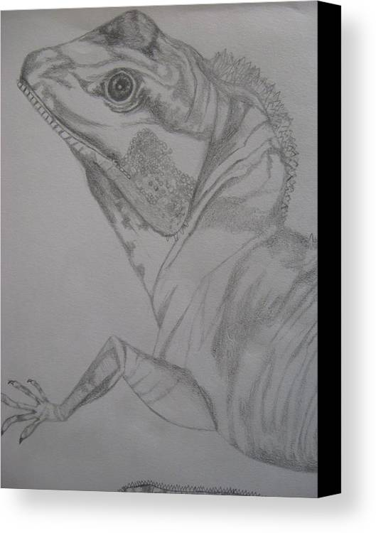 Dragon Canvas Print featuring the drawing Waterdragon Vertical Close Up by Theodora Dimitrijevic