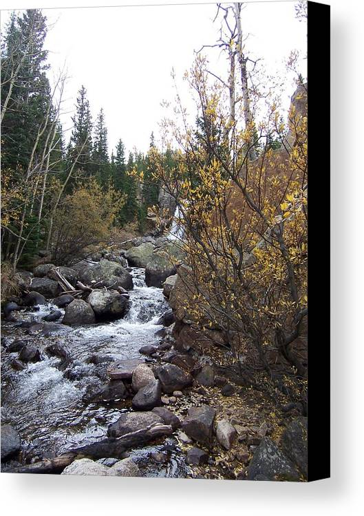 Landscape Canvas Print featuring the photograph Waterfall by Lisa Gabrius