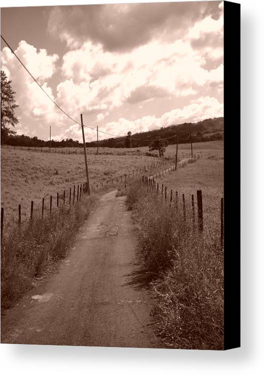 Home Canvas Print featuring the photograph Way To Home by Gabriel Mendez
