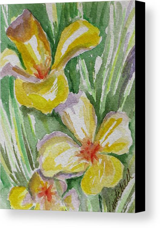 Floral Canvas Print featuring the painting Yellow Wild Flowers II by Kathy Mitchell