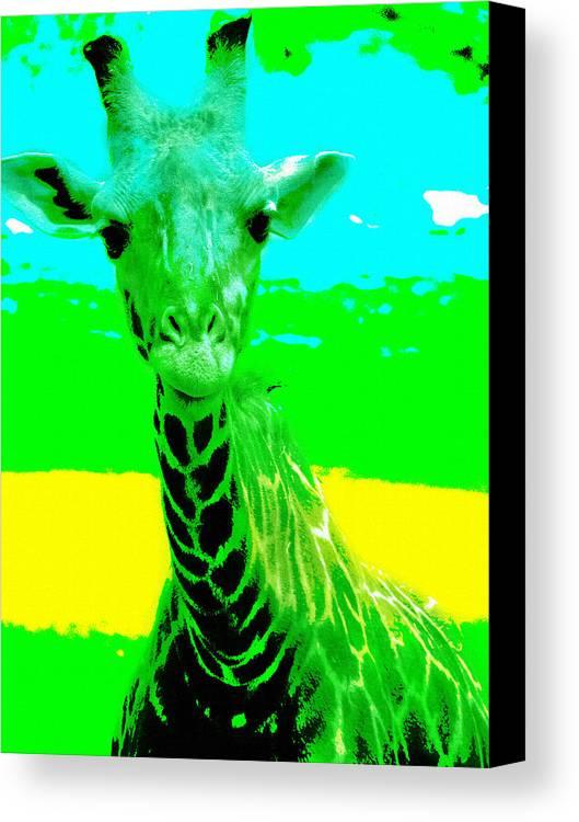 Zany Giraffe Canvas Print featuring the photograph Zany Giraffe by Lisa S Baker