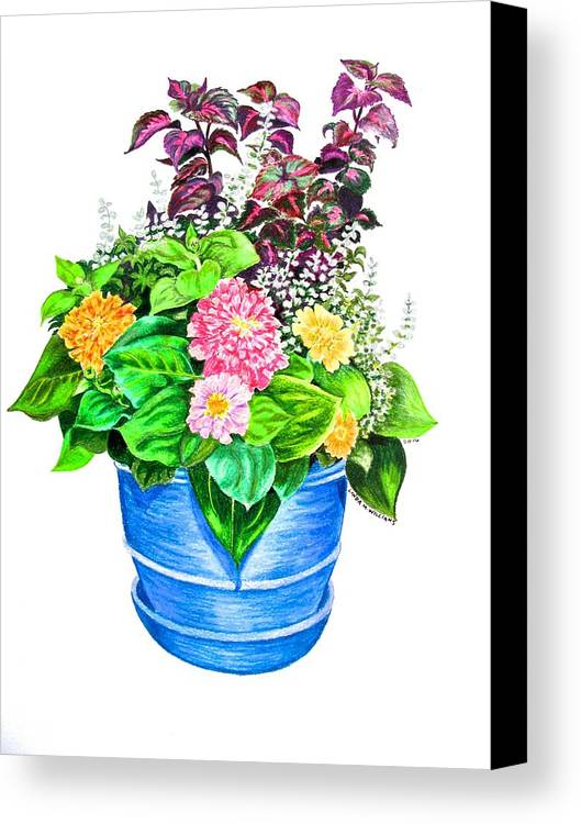 Still Life Canvas Print featuring the drawing Zinnia Container Garden by Linda Williams