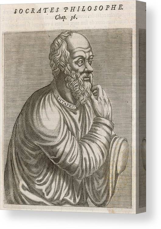 Socrates Canvas Print featuring the drawing Socrates (470 - 399 Bc) Greek by Mary Evans Picture Library