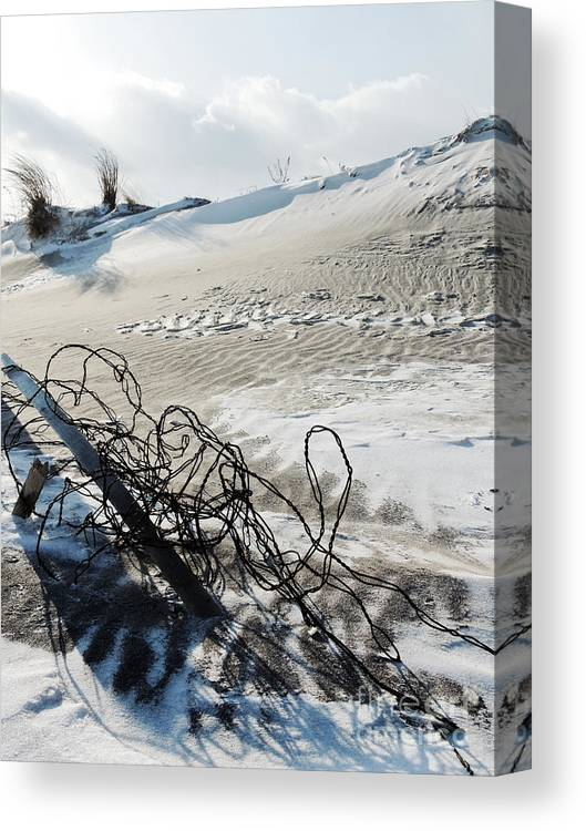 Assateague Canvas Print featuring the photograph Barb Beach by Lana Hauser