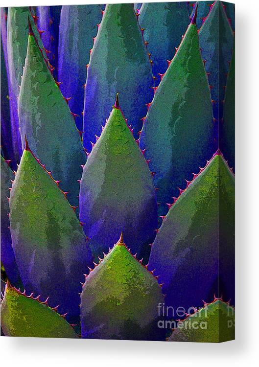 Blue Canvas Print featuring the painting Blue Agave by Victoria Page